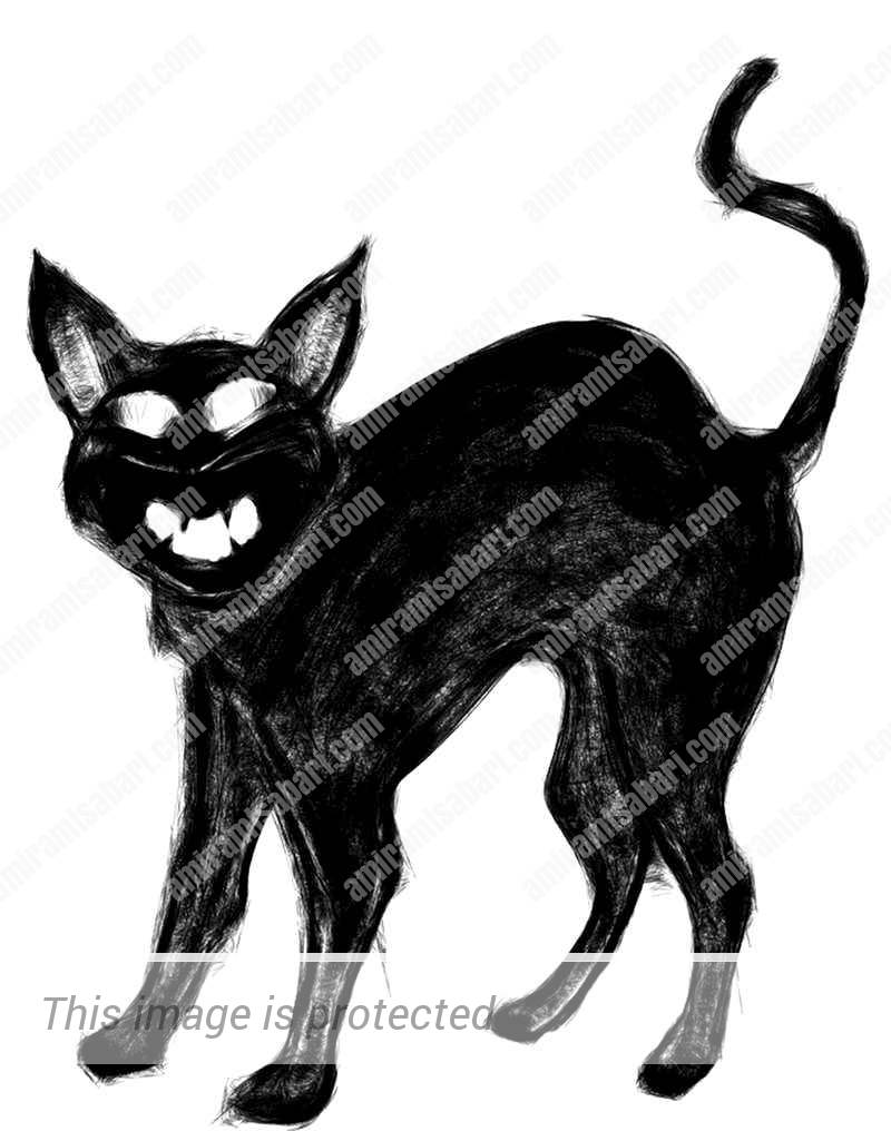 חתול כשרוני עם תשע נשמות