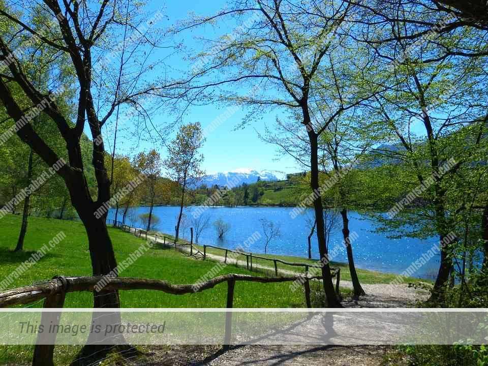מסלול הליכה נינוח על השביל המקיף את האגם.
