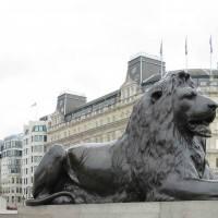 כפות רגליים של חתול – סיפור האריות של כיכר טרפלגר
